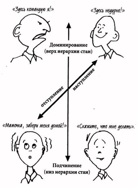 Токсикологические особенности