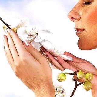 Порог восприятия запаха