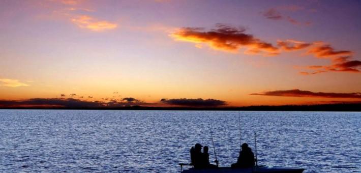 Рыбалка в Подмосковье — лучшее средство для отдыха!